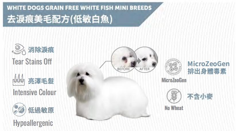 np-white-dog-white-fish.jpg